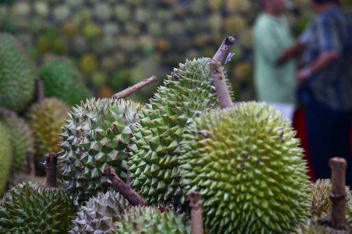 Durians. Image by momovieman via Creative Commons.