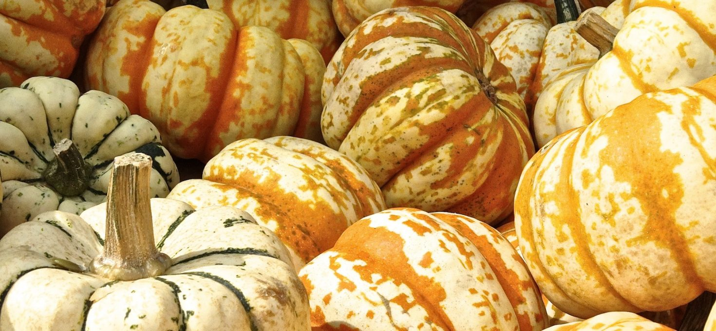 Pumpkin – 3 Ways To Eating It