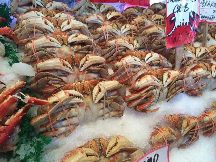 seafood-organic-article-cravings-blog-krishy-mal